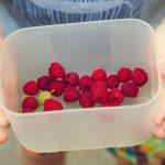 raspberry-lunchbox